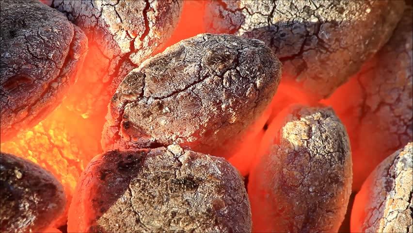 Уголь или брикеты? Что лучше?